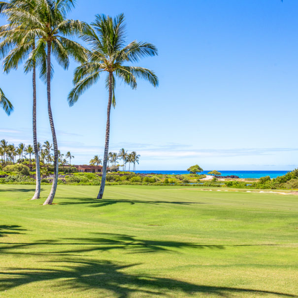 View of Hualalai Golf course with coconut trees and ocean in the background